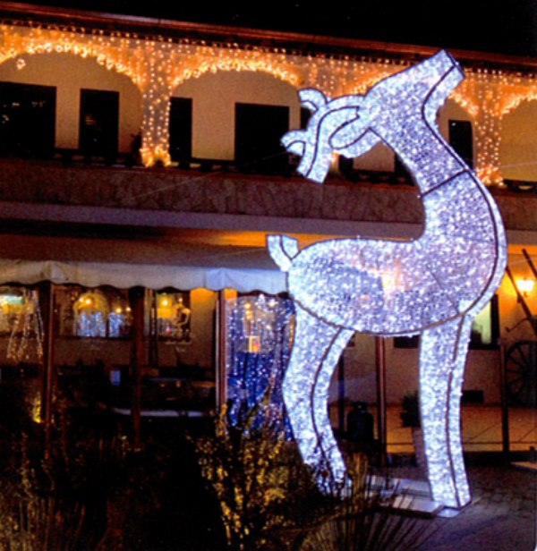 Soci t de decoration de no l montpellier d corations for Illumination exterieur noel