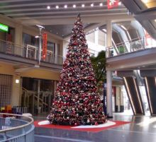 location-achat-sapin-deco-noel-clermont